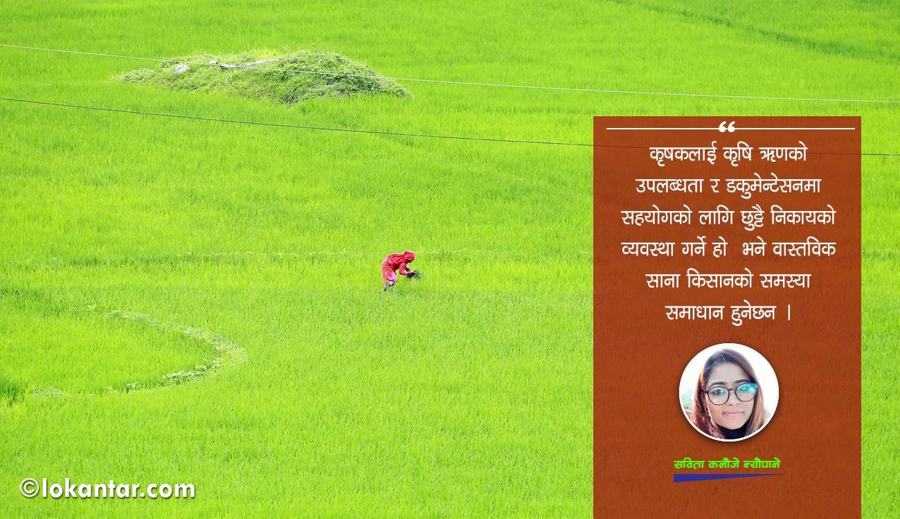 मौद्रिक नीतिमा कृषि क्षेत्रलाई सम्बोधन : गर्नैपर्ने यी १५ काम